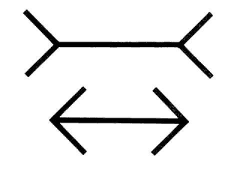 L'illusione di Müller-Lyer